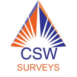 CSW Surveys
